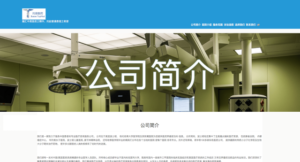 Chinese English WordPress Website