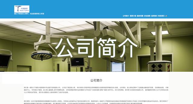 Chinese English WordPress Website