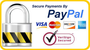 secure checkou with paypal