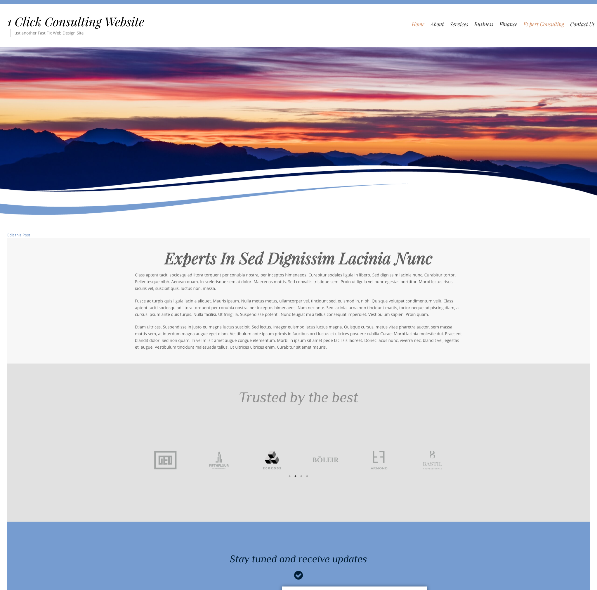 Elementor Consulting Website 1 Click Installation