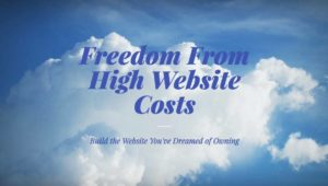freedome from high cost website design