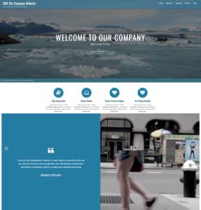 $99 company website