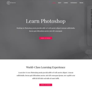 elementor ecourse website