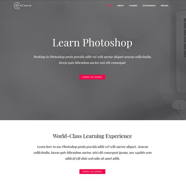 elementor ecourse website