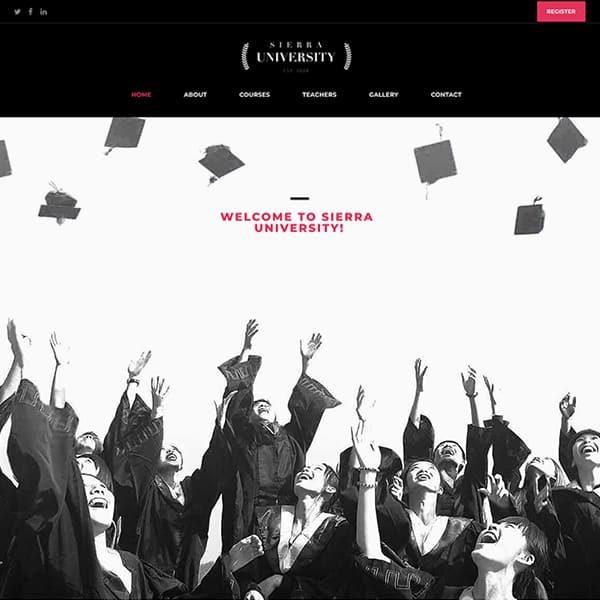 elementor university education website