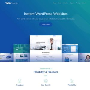 elementor website design development agency