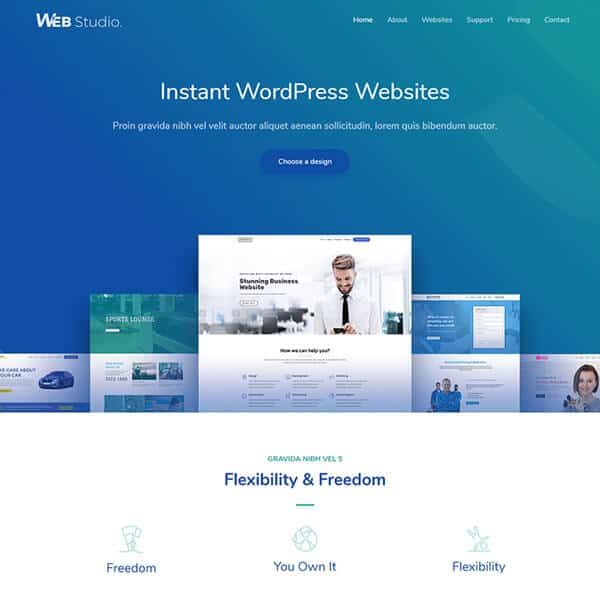 elementor website design development agency