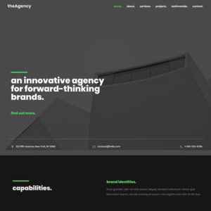 elementor wordpress website design agency