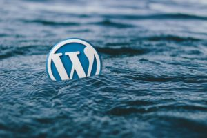 WordPress SOS Help Minneapolis St.Paul Twin Cities